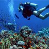 hurghada-diving